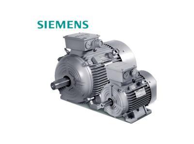 SIEMENS 1LE0 Low-voltage Motors